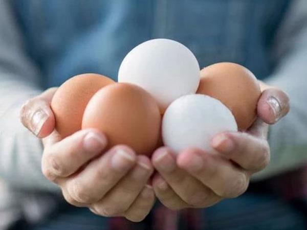 social-egg-freezing-img1-delhi-ivf
